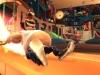 WiiU_ActionHenk_screenshot_05