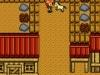 N3DS_VC_GBC_HarvestMoon2_gameplay_04