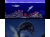 N3DS_3DEccotheDolphin_02