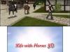 N3DS_LifewithHorses3D_02