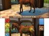 N3DS_HorseVet3D_gameplay_02