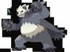 pokemon_xy-16-1