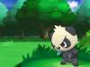 pokemon_x_y-24