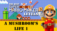 SMM-Mushroom'sLife