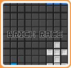 brickrace