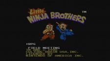 little-ninja-brothers