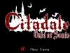 WiiU_Citadale_05