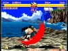 Switch_ACANEOGEOSAMURAISHODOWN_screen_01
