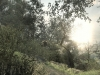 call_of_duty_ghosts-2