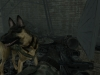 call_of_duty_ghosts-8