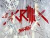 Skrillex-Bangarang_300x225