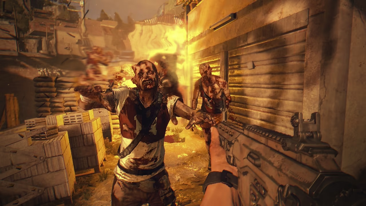 Dying Light Switch frame rate