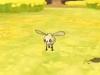pokemon-s-4