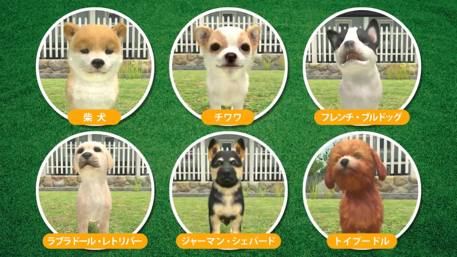 Little Friends Dogs Cats New Trailer And Commercial Nintendo