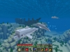 minecraft-aquatic-2