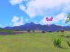 new-pokemon-snap-s-6