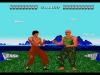 WiiU_VC_ChinaWarrior_screen_03