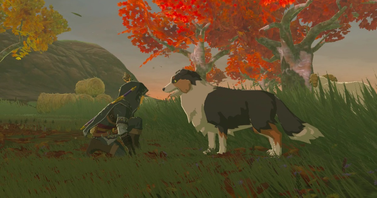 How To Pet Dogs In Breath Of The Wild